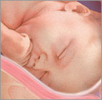 38-weken-zwanger-baby-2[1]